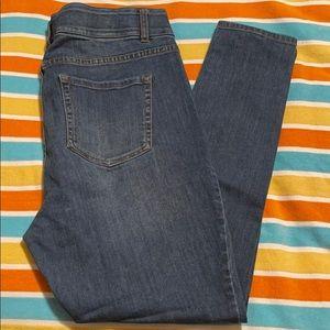 Venezia (Lane Bryant) Med Wash Skinny Jeans (14)